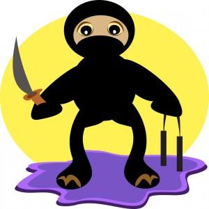Customer Service Ninja